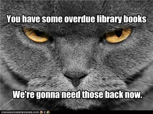 caturday overdue books