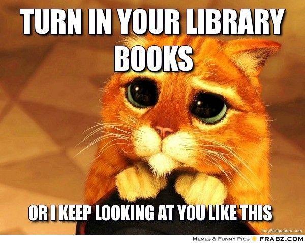 caturday turn in books