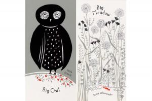 big owl little branch