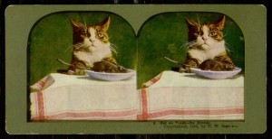 Stereogram, 3: Rat on Toast - for dinner, 1898.