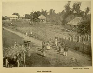 Una calzada. A carriageway between towns.