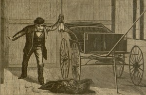 Saturday Night, v. XIX, no. 23, Saturday, February 11, 1882.
