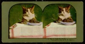 Stereogram, 3: Rat on Toast - for dinner, 1898.