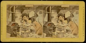 Stereogram, The Syracuse Blacksmith Shop (Fusion). Hurst's Stereoscopic Studies of Natural History: for object teaching in schools and parlor entertainments, 1870