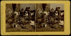 Stereogram, The dying Squirrel, with his Wife, Lawyer, Minister, etc.