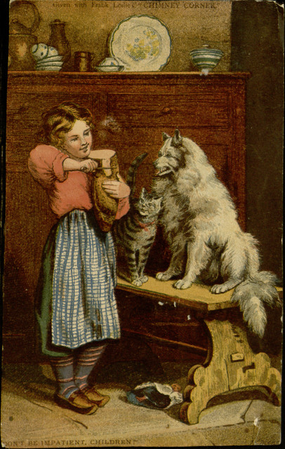 Girl feeding cat and dog salami