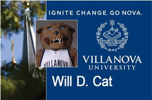 Will D Cat card