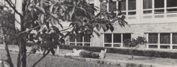 Student Lounging- from the 1975 yearbook