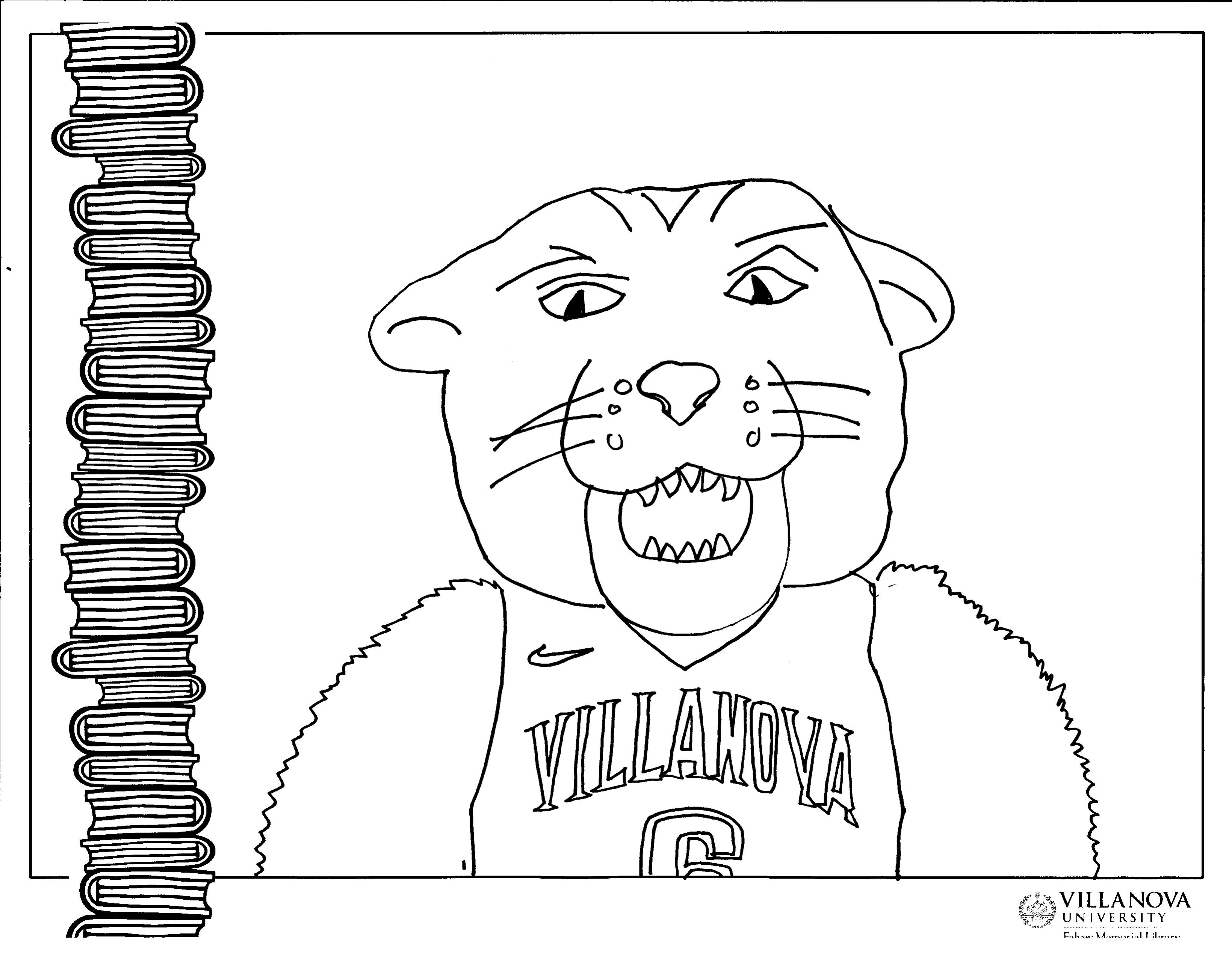 Color Wil D Cat books