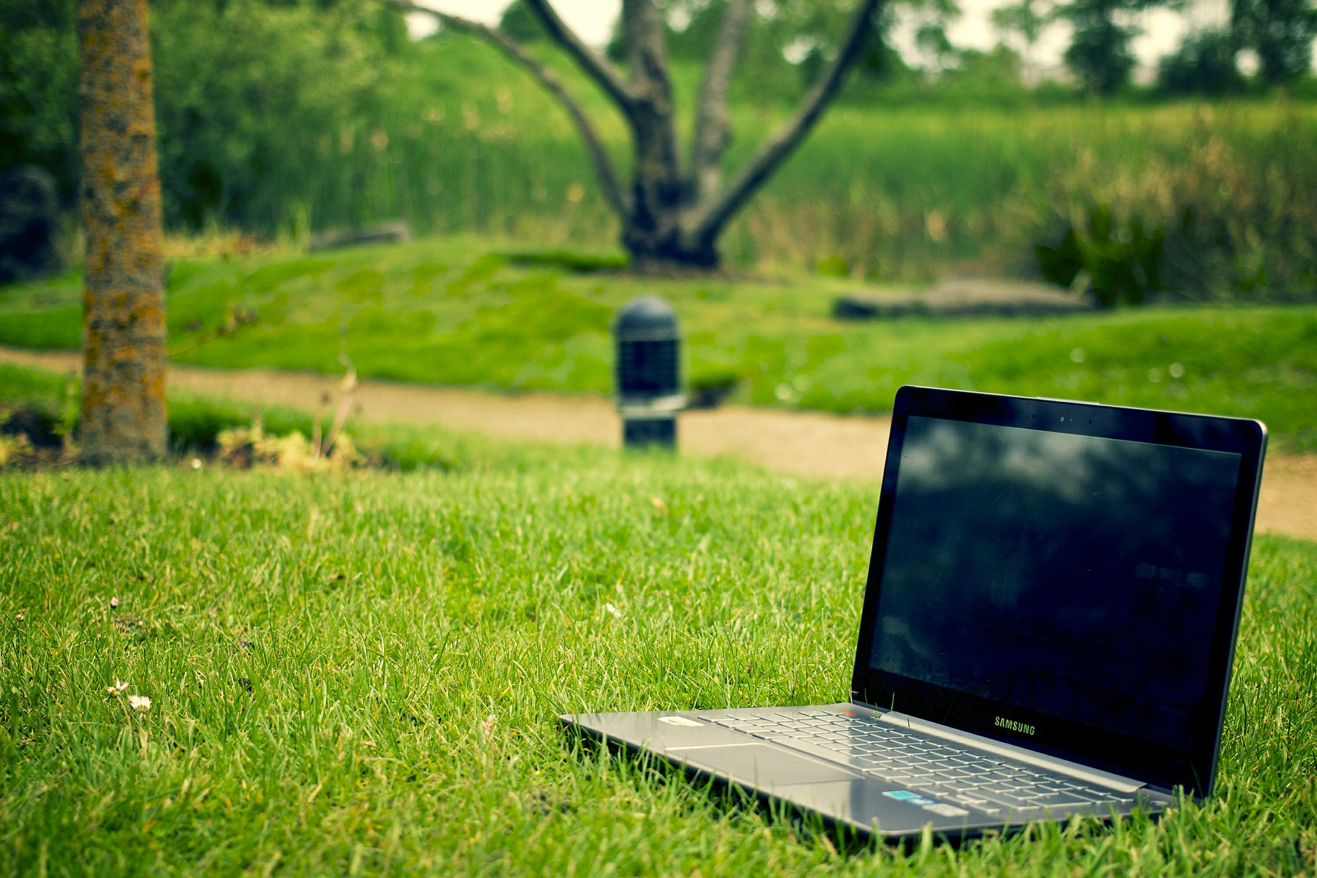 laptop on grass in a park