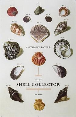 shellcollector resize