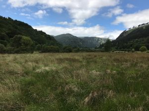A photo of Glendalough! (The valley of two lakes.)