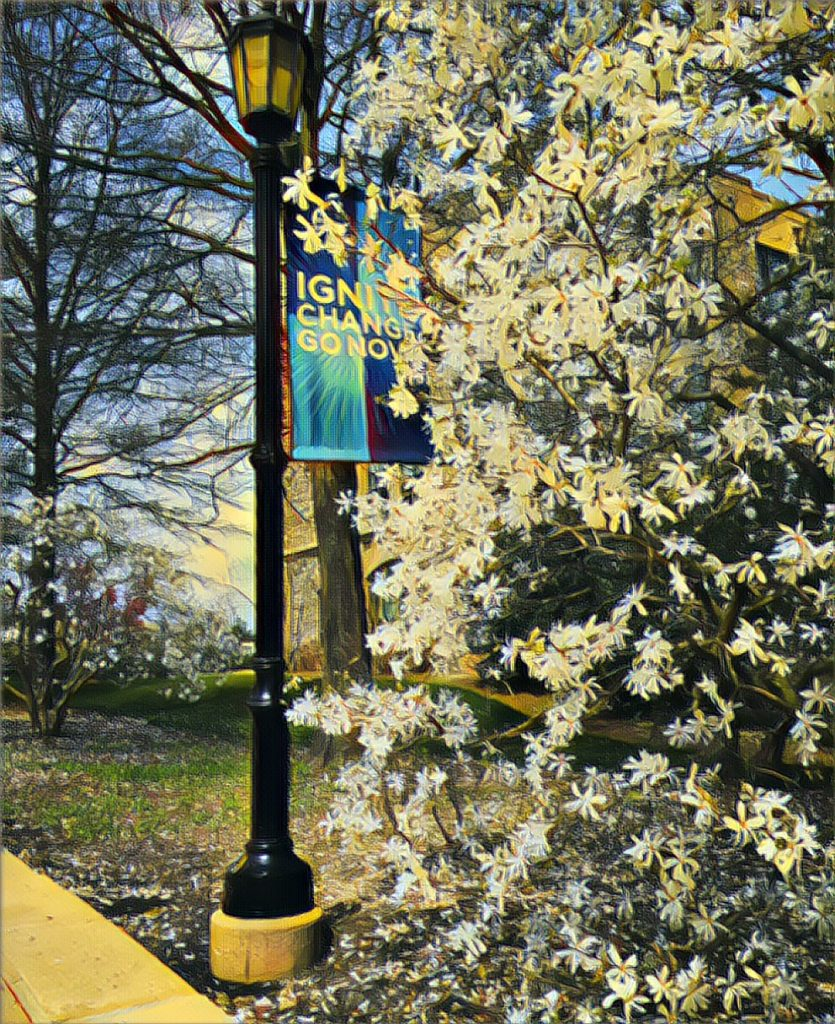 Spring flowers in bloom on Villanova's campus.