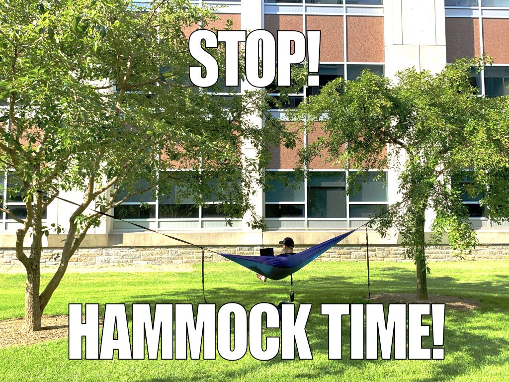 Student studies on hammock tied between two trees between the library and Mendel Hall.