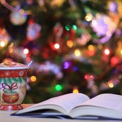 Cat in the Stax: Classics To Read for Christmas in July